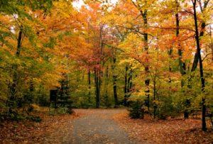 Fall Getaway in Bardstown, Kentucky