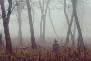 Spooky cemetery in foggy forest
