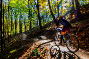Spring forest biking in Bernheim Arboretum